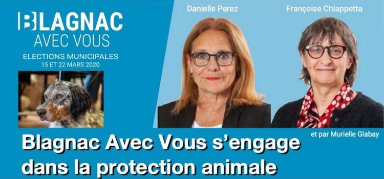 Blagnac Avec Vous s'engage dans la protection animale